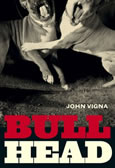 Bull Head by John Vigna